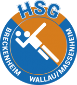 cropped-logo-hsg-2.png